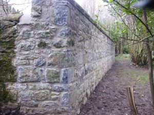 Repair and upgrade sections of stone wall at Coole/Garryland Nature Reserve